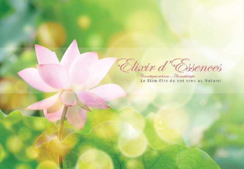 Création du catalogue Elixir -