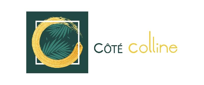 Création du logo Coté Colline -